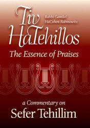 Tiv HaTehillos: The Essence of Praises