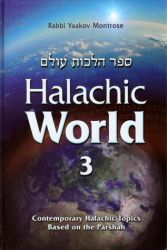 Halachic World, Volume 3