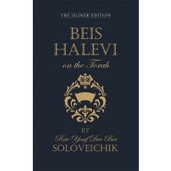 Beis Halevi on the Torah
