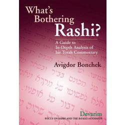 What's Bothering Rashi?: Devarim