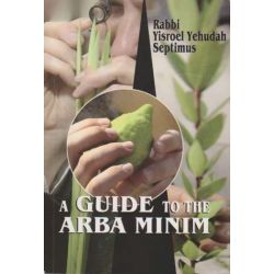 A Guide to the Arba Minim