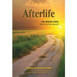 Afterlife, The Jewish View